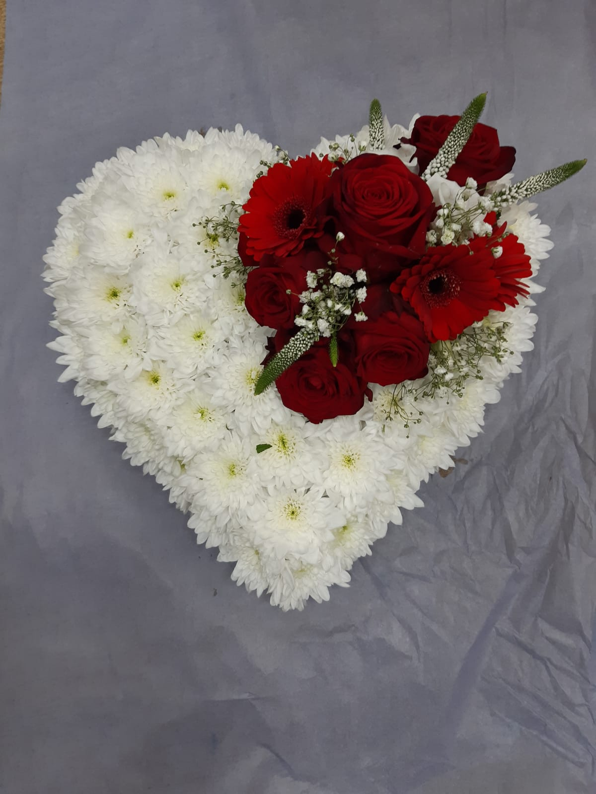 Funeral base white with red Germini roses gyp veronica